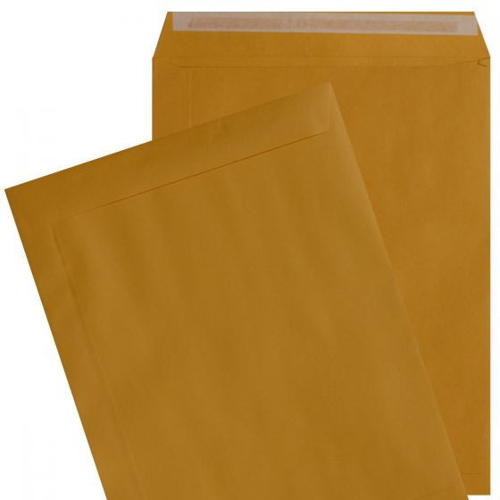 Commodities Brown Kraft (2) Envelopes Purchase from PaperPapers