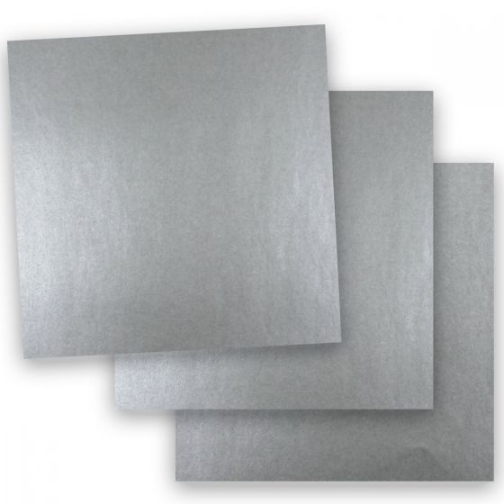 Shine Pewter (2) Paper Shop with PaperPapers