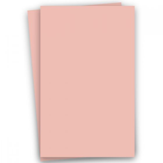 Basis Coral (2) Paper -Buy at PaperPapers