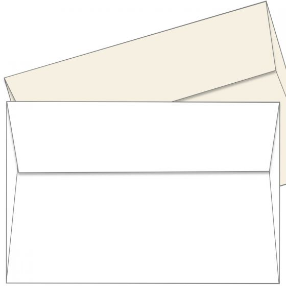 Cougar  (1) Envelopes -Buy at PaperPapers