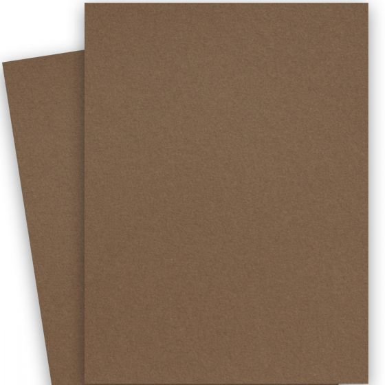 Crush Hazelnut (3) Paper -Buy at PaperPapers