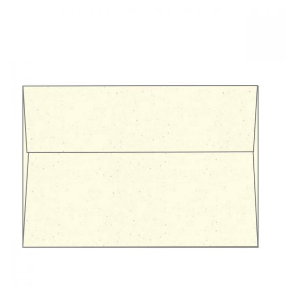 Environment Birch (2) Envelopes Order at PaperPapers