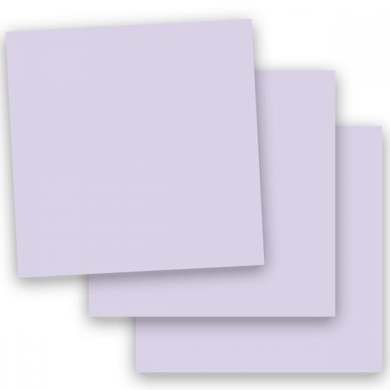 Basis Light Purple (2) Paper -Buy at PaperPapers