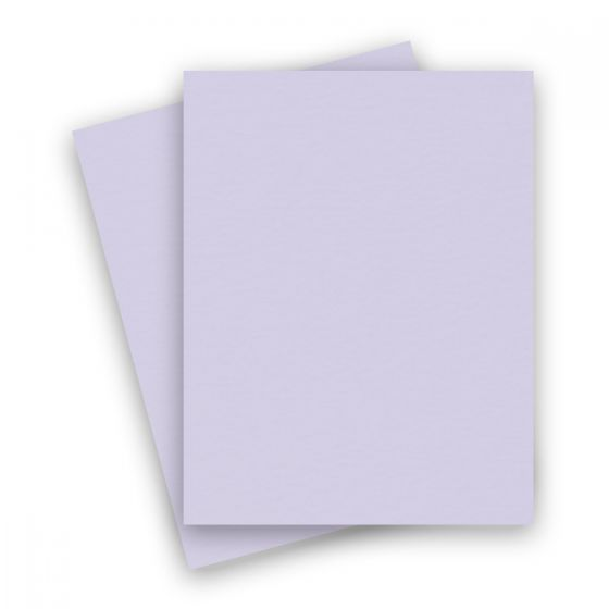 Basis Light Purple (2) Paper Find at PaperPapers