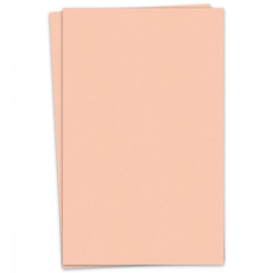 Kraft-tone Memo Orange Kraft (2) Paper Available at PaperPapers