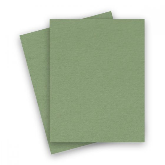 Basis Olive (2) Paper Available at PaperPapers