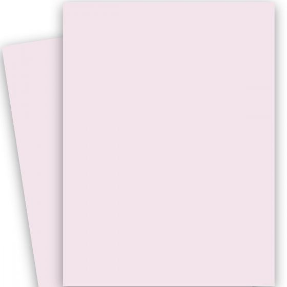 2PBasics Pink (2) Paper Find at PaperPapers