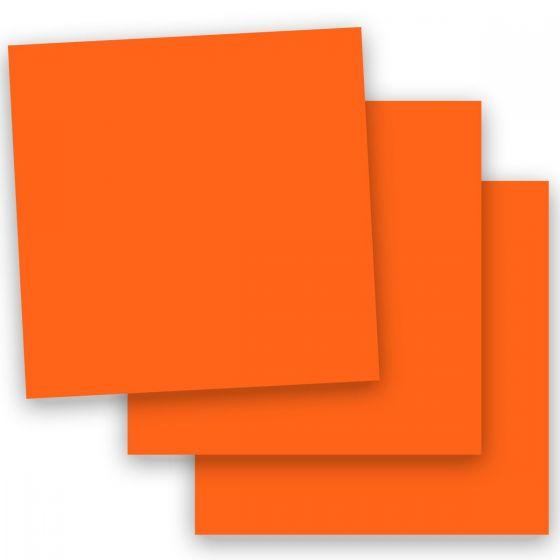 Plike Orange (1) Paper -Buy at PaperPapers