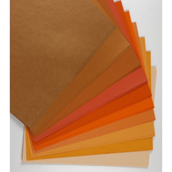 2PBasics  (4) Variety Packs Offered by PaperPapers
