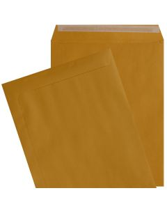 9X12 Catalog Envelopes - 28lb BROWN KRAFT - Peel to Seal - (9 x 12) - 500 PK