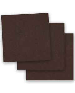 BASIS COLORS - 12 x 12 CARDSTOCK PAPER - Brown - 80LB COVER - 50 PK