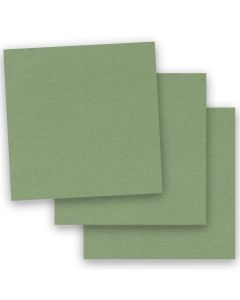 BASIS COLORS - 12 x 12 CARDSTOCK PAPER - Olive - 80LB COVER - 50 PK