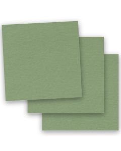 BASIS COLORS - 12 x 12 PAPER - Olive - 28/70 TEXT - 50 PK