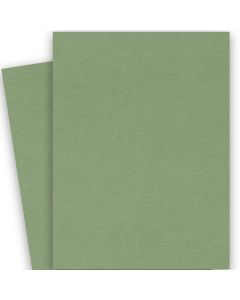 BASIS COLORS - 26 x 40 CARDSTOCK PAPER - Olive - 80LB COVER - 100 PK