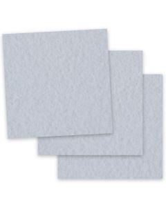 Parchtone GUNMETAL - 12 x 12 Parchment Card Stock - 80lb Cover - 50 PK