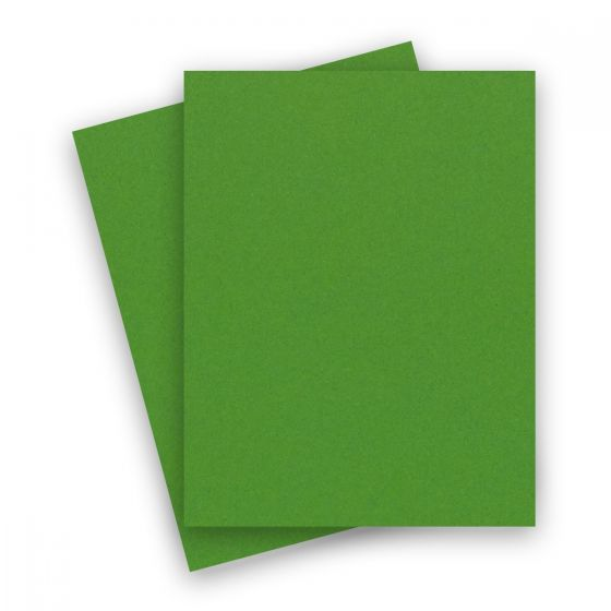 Extract - CACTUS 8-1/2-x-11 Letter Size Cardstock Paper 380 GSM (140lb Cover) - 10 PK