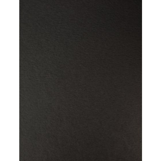 Wild - 8.5X11 Card Stock Paper - BLACK - 111lb Cover (300gsm) - 25 PK