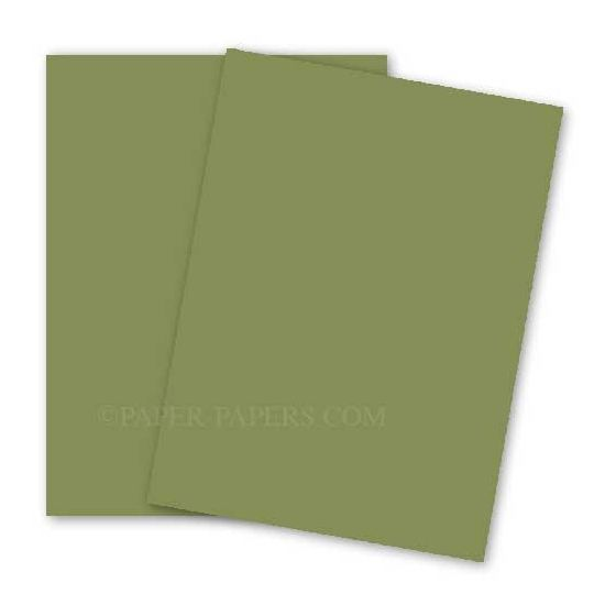 BASIS COLORS - 12 x 18 PAPER - Olive - 28/70 TEXT - 200 PK