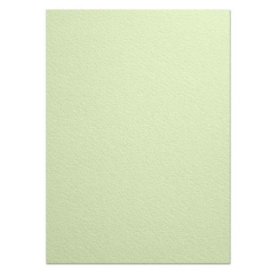 Arturo - 8.5 x 11 - 96lb Cover Paper (260GSM) - CELADON - 250 PK
