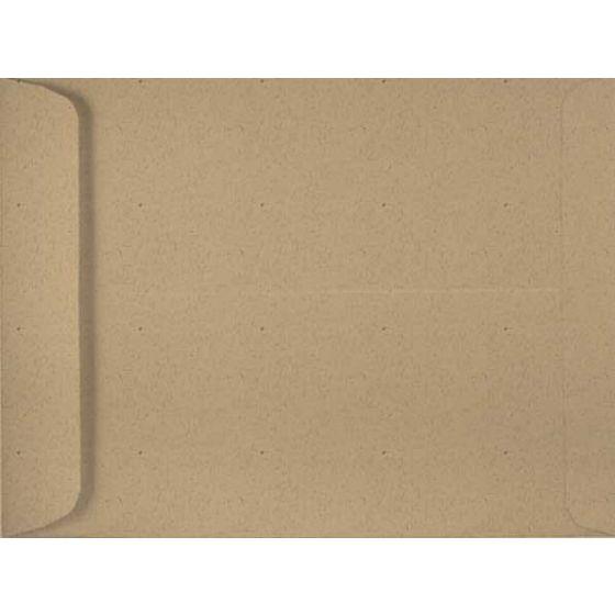 Environment DESERT STORM (80T/Smooth) - 10X13 Envelopes (13.5 Catalog) - 1000 PK [DFS-48]