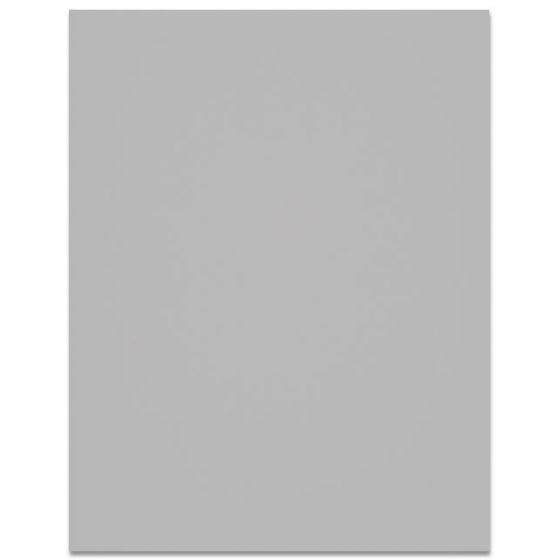 Curious SKIN - Grey - 27X39  Card Stock Paper - 100lb Cover (270gsm)