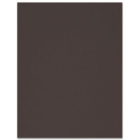 Curious SKIN - Mocha - 12 x 12 Card Stock Paper - 100lb Cover - 100 PK