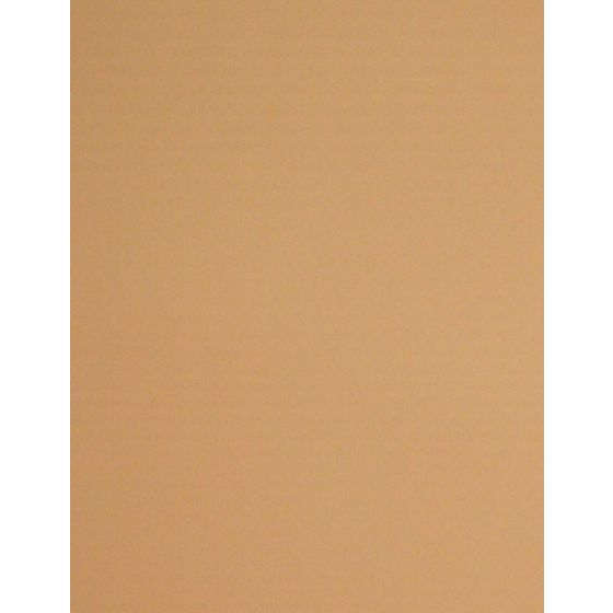 [Clearance] SALMON - 8.5X11 10PT 82C/223gsm - Litho Sheen Card Stock Paper - 100 PK