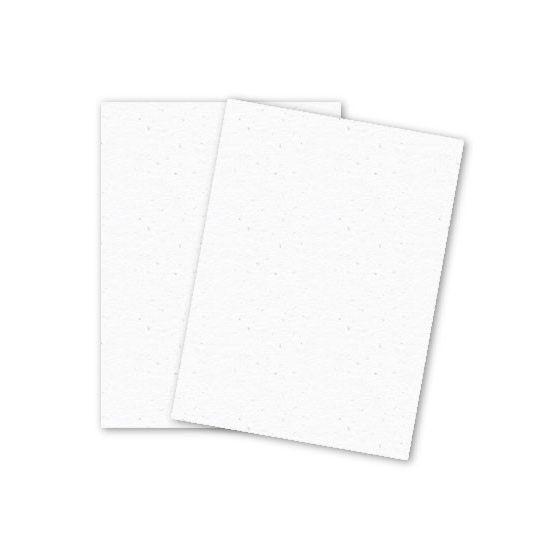 Mohawk Loop Antique Vellum - SNOW - 110lb Cover - 8.5 x 11 Card Stock Paper - 250 PK