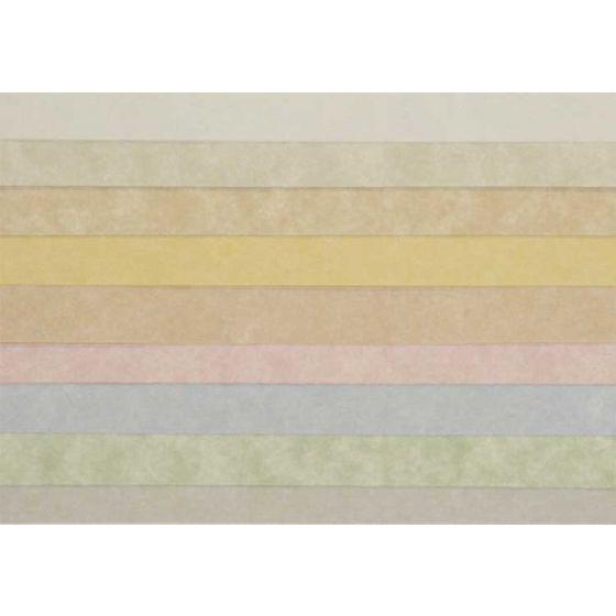 Astroparche - 23 x 35 Parchment Paper - 60lb Text