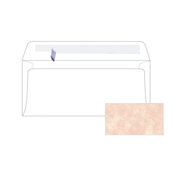 Astroparche - Shell No. 10 peel and seal Envelopes (4.125-x-9.5-inches) - 2500 PK