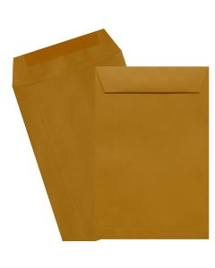 6X9 Catalog Envelopes - 24lb Brown Kraft - (6 x 9) - 500 PK [DFS-48]