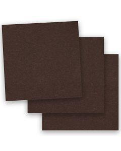 BASIS COLORS - 12 x 12 CARDSTOCK PAPER - Brown - 80LB COVER - 50 PK