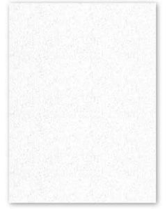 Neenah CLASSIC CREST 8.5 x 11 Cardstock Paper - Whitestone - 110lb Cover - 250 PK