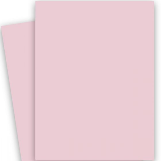 Poptone Bubblegum (2) Paper -Buy at PaperPapers