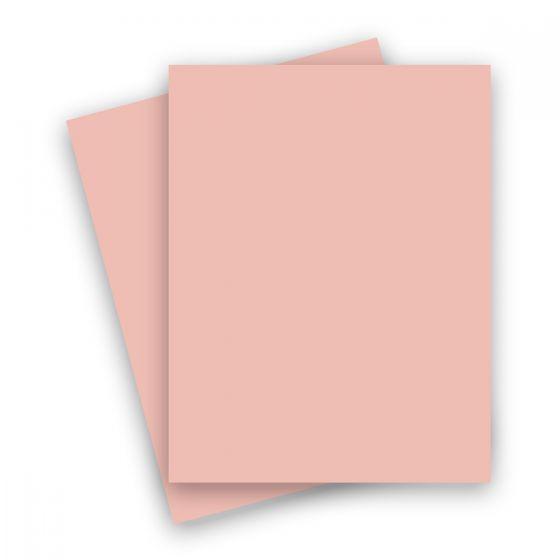 Basis Coral (2) Paper Order at PaperPapers
