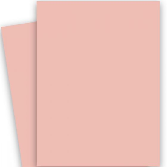 Basis Coral (2) Paper Available at PaperPapers