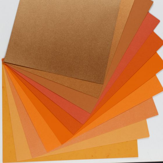 2PBasics  (1) Variety Packs Available at PaperPapers