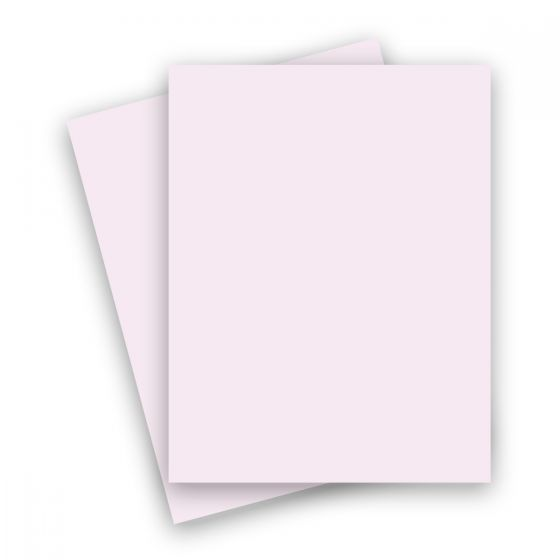 Basis Soft Pink (2) Paper Purchase from PaperPapers