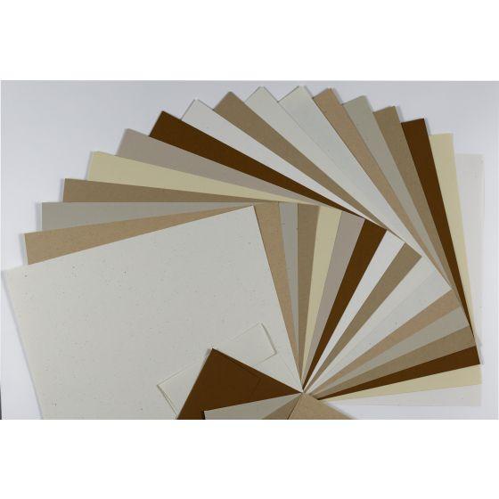 Speckletone  (2) Sample Pack -Buy at PaperPapers