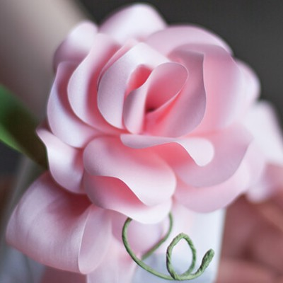 Paper Rose by Lia