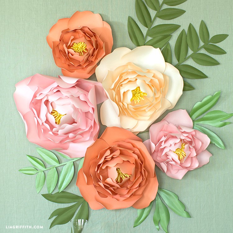 Paper Jumbo Peonies Project by Lia